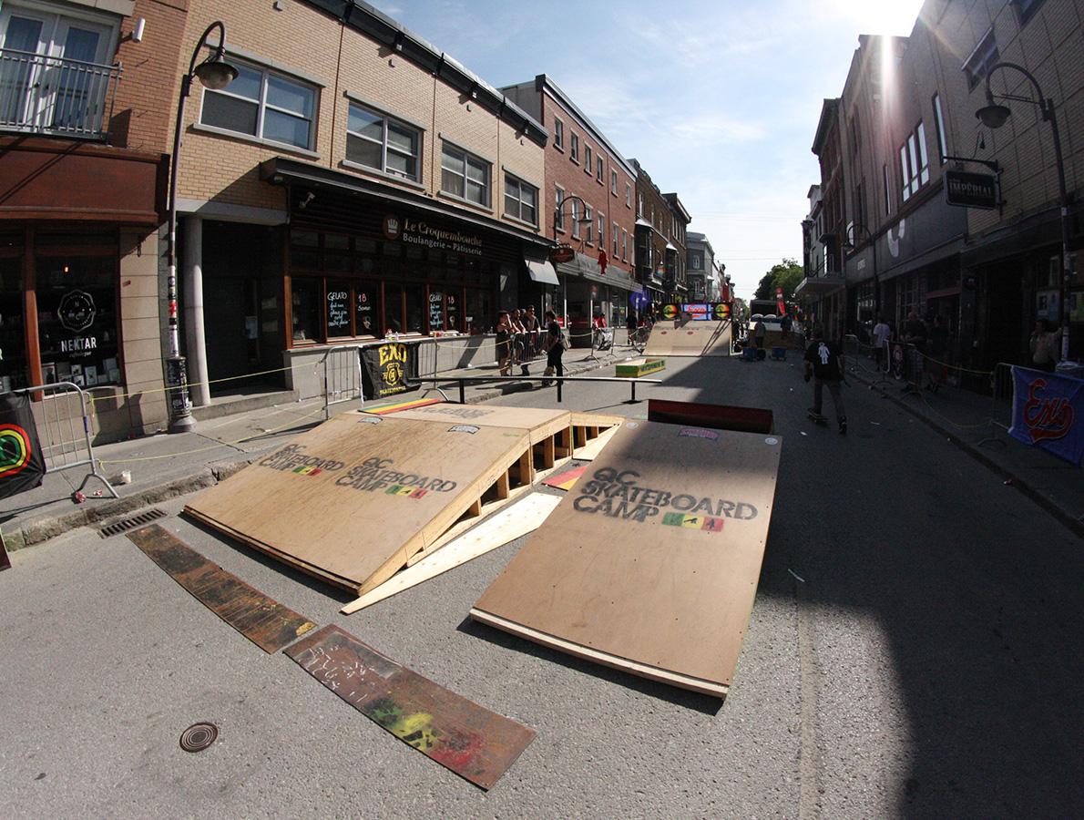 2014-location-skateparc-demontage-wild-st-joseph-