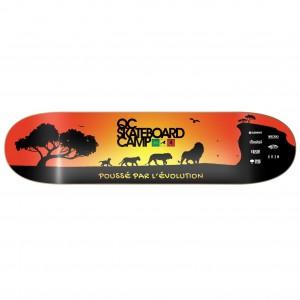 Skateboard édition limité Qc.SkateboardCamp - Évolution sunshine