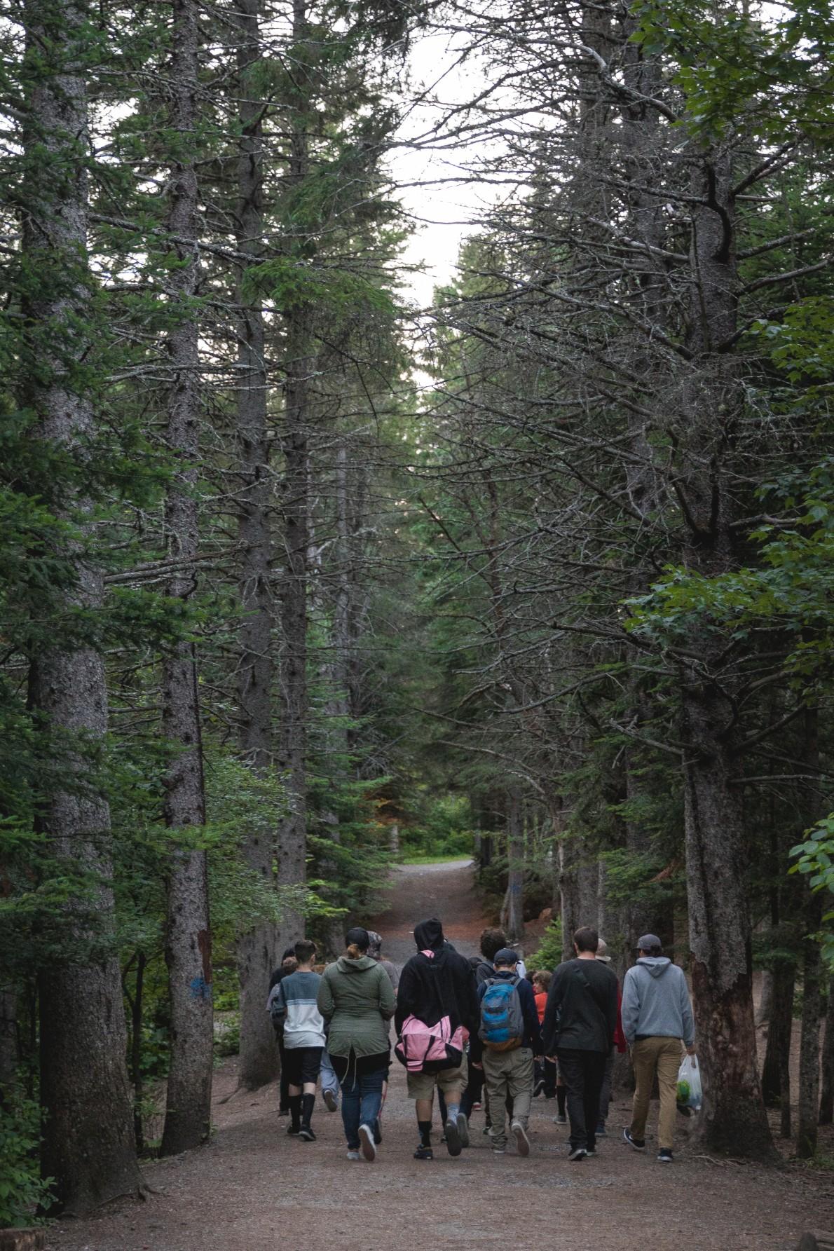 10_qcskatecamp__camp_skate_vacances_web_foret-e1481827399674